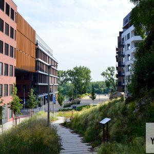 Messerschmidtovo námestie z parčíku pri Skalnom nose s atraktívnym pohľadom na lesy na pravom brehu Dunaja.