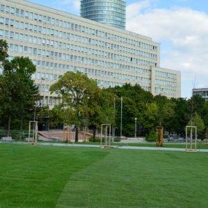 Na Námestí Slobody by sa mala nachádzať najväčšia plocha trávnatého koberca v Bratislave s výmerou 5-tisíc metrov štvorcových.
