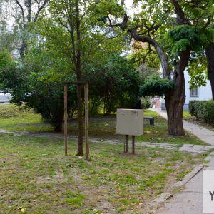 V ďalšej fáze by aktivisti radi zrevitalizovali okolie pamätníka Rodiny Tomislava Kolakoviča
