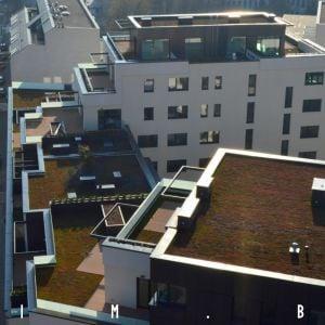 Jednotlivé domy majú zelené strechy