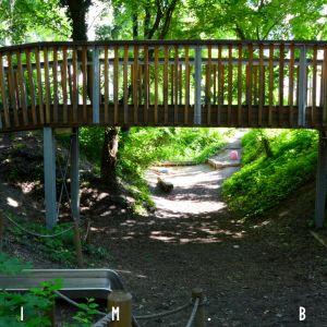 Architekti využili existujúci terén, vďaka čomu vyzerá park prirodzenejšie