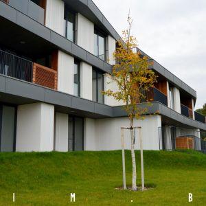 Projekt obsahuje prízemné byty s predzáhradkami