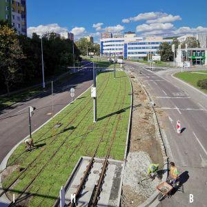 Nová zeleň na trati v Karlovej Vsi