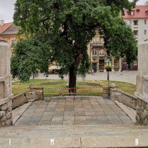 Určité úpravy sa realizujú aj na Rudnayovom námestí, 1.8.2021